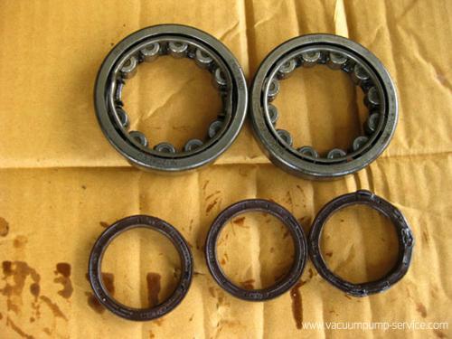 Repairing Single Stage Rotary Vane